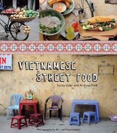 Vietnamese Street Food - just bought this...