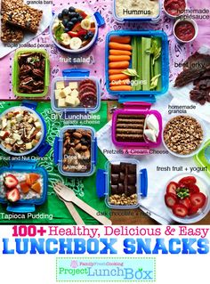 100+ Healthy, Delicious & Easy Lunchbox Snacks from @Marla Landreth Landreth Landreth Landreth Landreth Landreth Meridith- lifesaver!