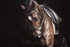 B.K. Lawes Art > Gallery > Equine