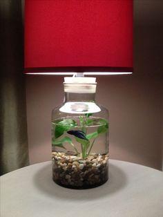 Idea For A Fillable Lamp Fillable Lamp Fish Lamp Decor Fillable Lamp, Aquarium Lamp, Fish Lamp, Glass Lamp Base, I Love Lamp, Tips And Tricks, Mason Jar Lamp, Christmas Wallpaper, Lamp Shades