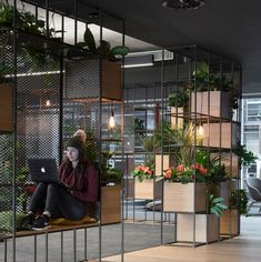 Slack's Dublin office is an example of making plants central to your office desi… – Modern Home Office Design Corporate Office Design, Modern Office Design, Workplace Design, Office Interior Design, Office Interiors, Office Designs, Modern Tech, Modern Offices, Healthcare Design