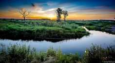 Quiet golden hour on a small river by Aleksei Malygin #xemtvhay