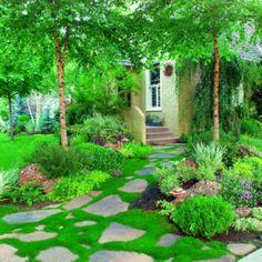 29 Best Moss Landscaping Images Moss Lawn Moss Garden Garden