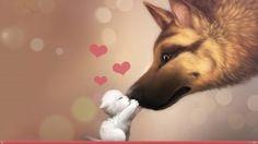 San Valentin - Persas Chinchilla, Golden y Silver La Reina