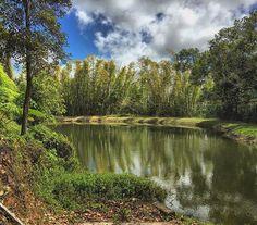 Lago toa vaca villalba puerto rico 100x35 pinterest for Dulce hogar villalba
