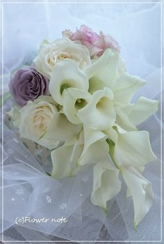 Calla Lillies, Flowers, Plants, Joy, Calla Lilies, Flora, Plant, Royal Icing Flowers, Flower