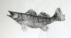 Гуотаку: рыбы в традиционном японском искусстве - Ярмарка Мастеров - ручная работа, handmade