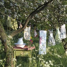 Washing line in the trees. Fresh laundry, on of Britain's favourite smells: http://www.countryliving.co.uk/news/britains-favourite-scent-revealed
