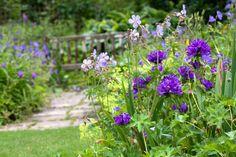 jardin des senteurs versailles | Au coeur de la Vallée de Chevreuse, le monde merveilleux du jardin du ...