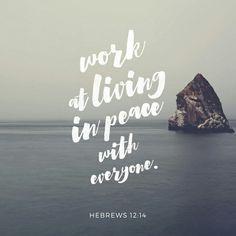 Busquen la paz con todos, y la santidad , sin la cual nadie verá al Señor. Hebreos 12:14 NVI http://bible.com/128/heb.12.14.NVI