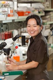 Another good article about Yukiko's MacArthur Fellowship 2011