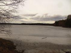 30.03.14 Kyynäränjärvellä jo paljon avointa vettä. Liesjärvelläkin Juovan selällä. Kopinlahti, josta kuva, vielä jäässä.