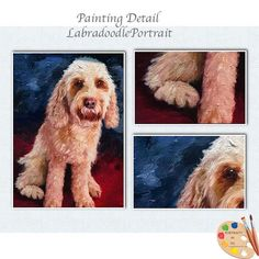 Learn something new Labradoodle Paint... http://portraits-by-nc.com/blogs/on-the-easel-oil-paintings-in-progress/171169923-labradoodlepaintingisfinished?utm_campaign=social_autopilot&utm_source=pin&utm_medium=pin and share your thoughts
