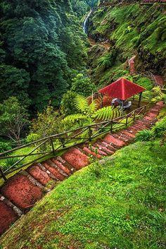 Natural Park of Ribeira Potholes, São Miguel Island, Azores, Portugal