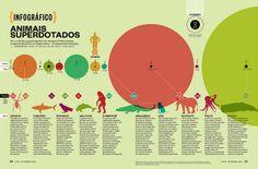 Animais superdotados by Ricardo Davino, via Flickr