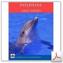 FUN Dolphins Unit Study! It's Dolphin Week!