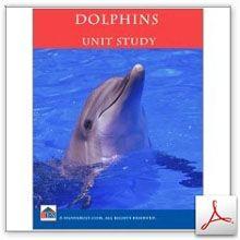 FUN Dolphins Unit Study! It's Dolphin Week!