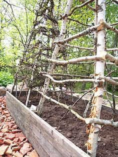 Trellis in vegetable garden, greenhouse out of view. I've made 2 of these types of trellises. Love them! Diy Garden, Dream Garden, Garden Beds, Garden Cottage, Garden Projects, Verticle Garden, Garden Trellis, Diy Trellis, Pumpkin Trellis