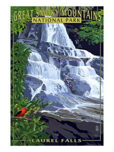 Great Smoky Mountain National Park Posters at AllPosters.com