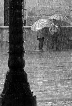 Umbrellas in the rain...want to imagine their conversation.....