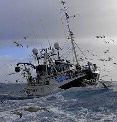 traditional scottish fishing - Google Search
