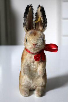 Steiff bunny-I still have mine