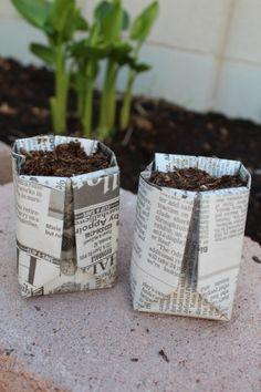 DIY Seed Starter Pots out of newspaper!