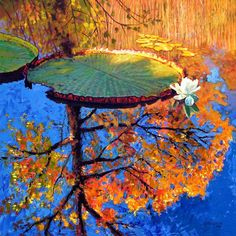 Colors of Fall - Paintings by John Lautermilch