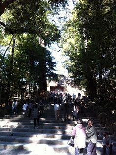 内宮 Dolores Park, Street View, Spaces, Travel, Viajes, Traveling, Tourism, Outdoor Travel