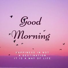 Everyone likes good morning images. If you too are searching for good morning images with flowers, then you have come to the right place. We provide good morning images on our website. Good Morning Images Flowers, Good Morning Image Quotes, Good Morning Beautiful Quotes, Morning Quotes Images, Good Day Quotes, Good Morning Images Hd, Morning Greetings Quotes, Morning Inspirational Quotes, Good Morning Picture
