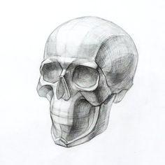 """""""Mi piace"""": 77, commenti: 1 - Художественная Мастерская (@artisthall.ru) su Instagram: """"Рисунок черепа. #рисунок #череп #творчество #художник #рисуноккарандашем #арт #рисую #drawing #draw…"""""""