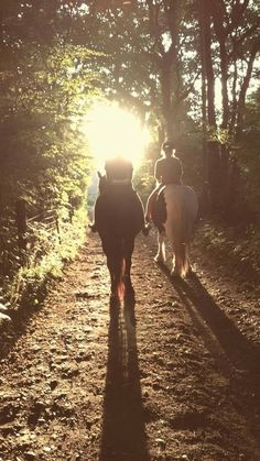 From Hannah, Ashford | The Jacksons BIG Equestrian Picture Competition #horse #riding #countryside #photography
