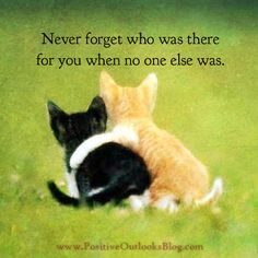 I will NEVER forget who was there for me-NO ONE!!! My own family and children turned their backs and abandoned me when I needed them most.And THAT-I will NEVER forget and I will take that with me to my grave!