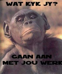 Afrikaanse Quotes, Spiritual Words, Cute Quotes, Bible Quotes, Jokes, Sayings, Fishing Knots, Funny, Benches