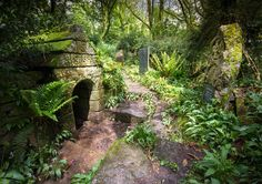 (1531, SX 248 602, Explorer 107) St.Keyne's Holy Well, Cornwall