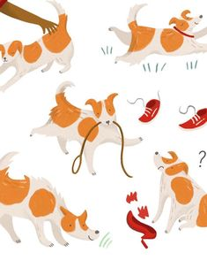 Happy Year of the Dog! Heres my little fluffy friend Mrs Belladawg... . . . . . #illustrator #illustration #digitalart #commission #editorialillustration #cintiq #wacomtablet #behindthescenes #workinprogress #portfolio #digitalillustration #colour #girlboss #artistsofinstagram #freeupmyinsta #instaart #artiststudio #artistes #artistdesktop #girlboss #smallbusiness #smallbusinessowner  #livecolorfully #creativelifehappylife #createeveryday #happyartistmovement #jackrussell #jackrussellsofig…