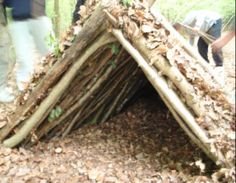 shelter building forest schools - Google Search