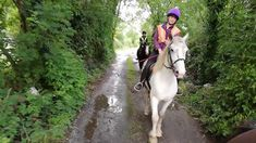 August 2019 A rare afternoon for the girls to head away on a trek just for ourselves. Ciara rode Jazz, Saoirse rode Rodney and Ava rode Chester. All That Jazz, Horses For Sale, Cob, Chester, Trekking, Irish, Irish People, Ireland, Hiking