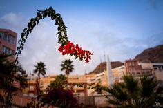 https://www.flickr.com/photos/carmen_ruiz/shares/Qh7BZY   Las fotos de Carmen Ruiz