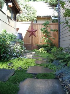 Small Side Garden - I like idea of shade-loving plants mixed with stone/gravel for between house & detached office.