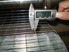 Stainless Steelelectric Welded Wire Mesh