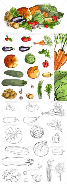 Vegetables Collection and a Still Life