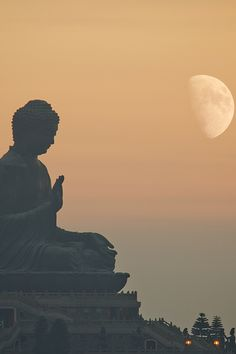 """The world is afflicted by death and decay. But the wise do not grieve, having realized the nature of the world."" Buddha"