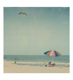 Some beach somewhere, there's a big umbrella casting shade over an empty chair. palm trees are growing, warm breezes blowing, I picture myself there's, some beach somewhere