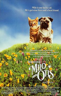 """The Adventures of Milo and Otis"", 1986. Dir. Masanori Hata. Stars:  Kyôko Koizumi, Dudley Moore, Milo."