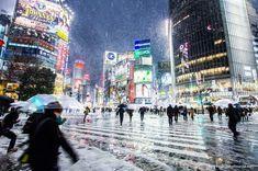 30 mejores imágenes de Viaje a japón en 2020 | Viaje a japón