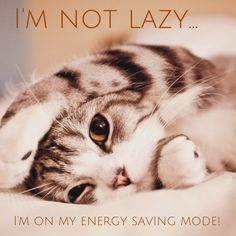 It's the weekend, time to switch to energy saving mode!