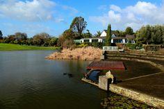 Hamilton Gardens, New Zealand Maori Designs, South Island, Auckland, Homeland, Kiwi, Hamilton, New Zealand, Beautiful Homes, Cloud