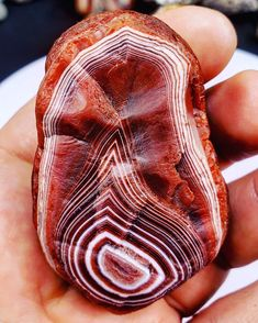 Holy moley!! Love Rocks, Rocks And Gems, Minerals And Gemstones, Rocks And Minerals, Lake Superior Agates, Mineral Stone, Natural Wonders, Stones And Crystals, Rings For Men
