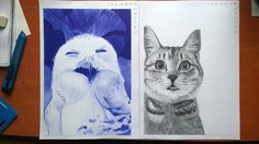 Mes dessins/My drawings on Behance